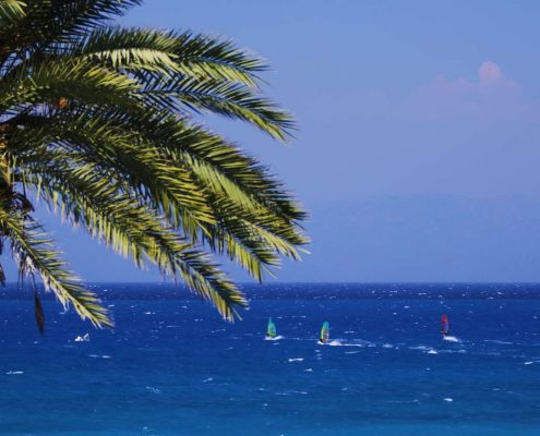 The best windsurfing rentals for your holiday